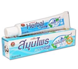 Зубная паста с травами Twin Lotos Herbal Fresh & Cool 40 гр